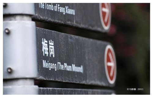 天津市出文:激励大学毕业生创业创新,最高荣誉三十万元