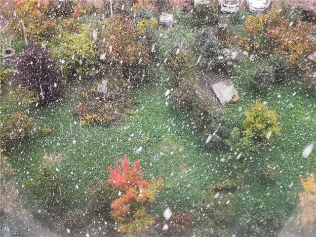 松江下雪了!多彩的秋天遇见白雪