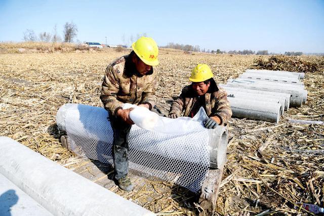 路沟相连的干能灌溉和涝能排水  16万亩高标准农田,绘就了这片田地的新画卷。 第1张