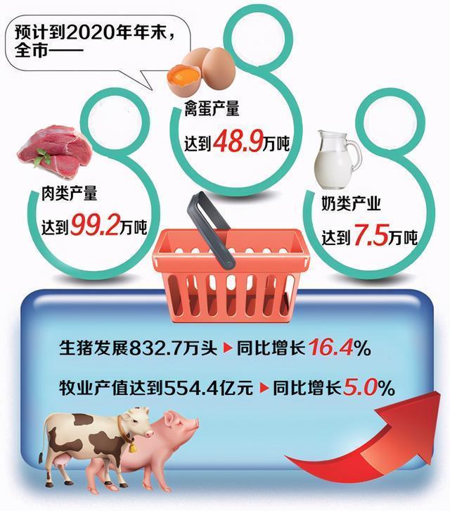 """全市畜牧业年产值预计达到554.4亿元,是价格安全、肉、蛋、奶优良的稳定""""菜篮子"""" 第2张"""