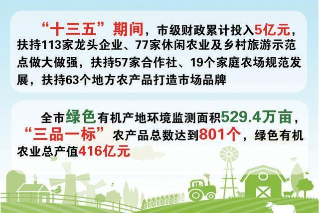 我市绿色有机农业产值突破400亿元。 第2张