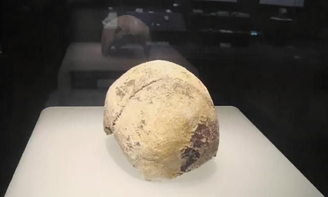 考古学家:人类在武汉的活动可以提前到4万到1.5万年前。 第1张