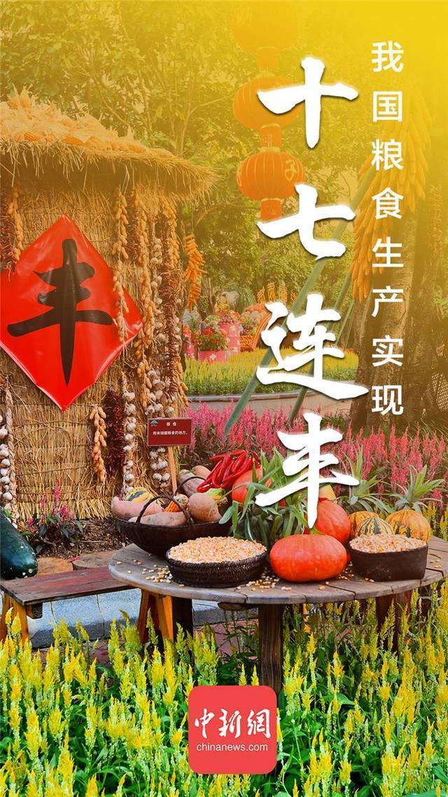 """中国的粮食生产已经实现了""""十七连收"""" 第1张"""
