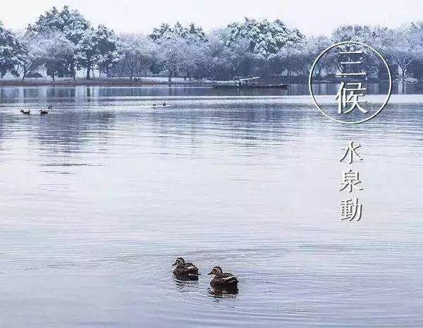 今天的冬至|世界美丽如期到来。 第7张