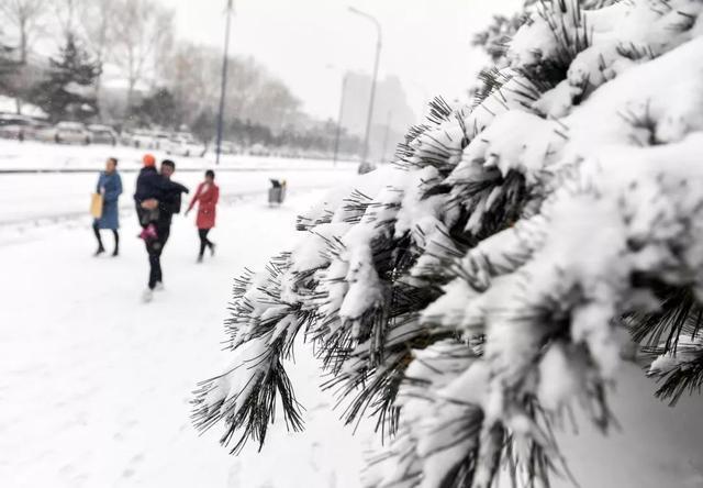 今天的冬至|世界美丽如期到来。 第13张
