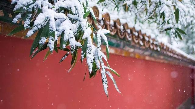 今天的冬至|世界美丽如期到来。 第15张