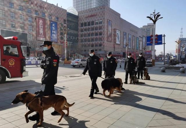 白山:警犬帮忙护送春节。 第1张