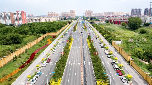 城市绿化惊喜多等春风吹绿。 第2张